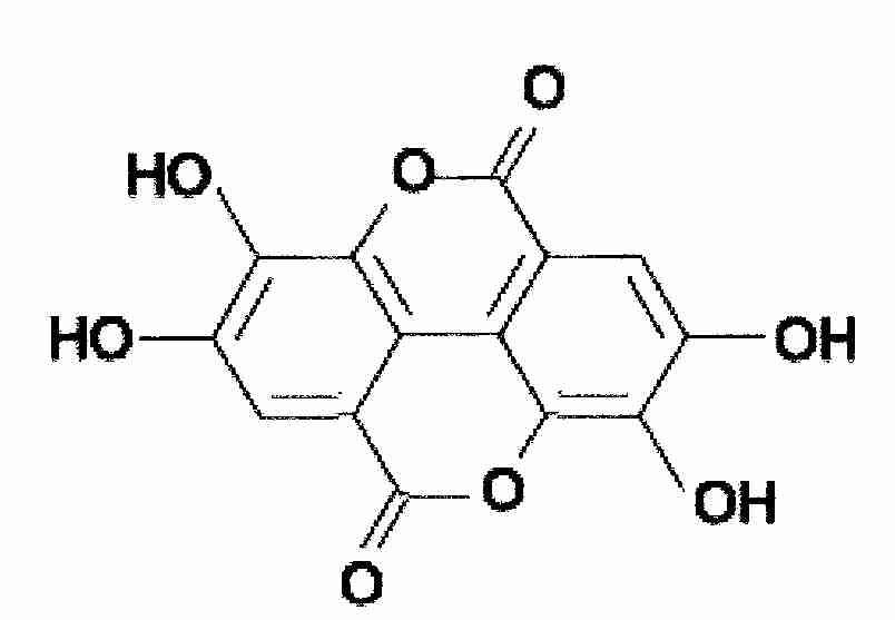 Solving the Ellagic Acid Sediment Issue
